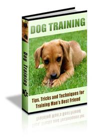 90 Dog Training Tips | eBooks | Pets