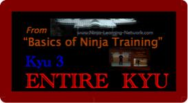 Basics of Ninja Training - 3rd Kyu -LARGE MOVIES VERSION- Bujinkan / Ninjutsu