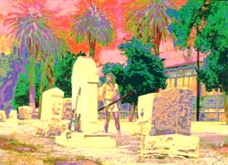 Second Additional product image for - Coyote In A Graveyard - SCREENPLAY
