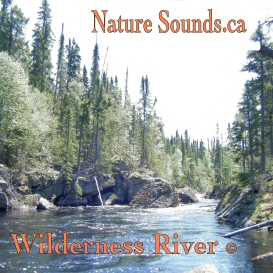 Wilderness River | Music | Ambient