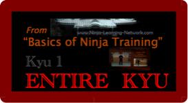 Basics of Ninja Training - 1st Kyu - LARGE MOVIES VERSION -Bujinkan / Ninjutsu