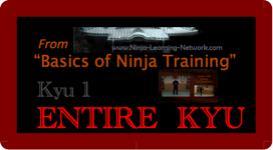 Basics of Ninja Training - 1st Kyu - LARGE MOVIES VERSION -Bujinkan / Ninjutsu | Movies and Videos | Sports