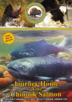 Canadian Wildlife Journey Home of the Chinook Salmon Volume  6 | Movies and Videos | Other