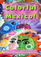 colorful mexico, dvd, worldwide travel films