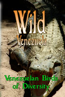 Wild Venezuela Venezuelan Birds of Diversity DVD Ferraro Nature Films | Movies and Videos | Special Interest