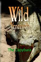 Wild Venezuela The Capybara DVD Ferraro Nature Films | Movies and Videos | Special Interest