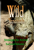 Wild Venezuela Strategies for Animal Survival Volume 1 DVD Ferraro Nature Films | Movies and Videos | Special Interest