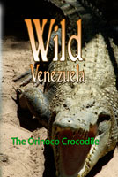 Wild Venezuela The Orinoco Crocodile DVD Ferraro Nature Films | Movies and Videos | Special Interest