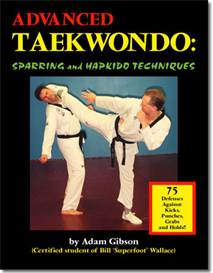 advanced taekwondo sparring and hapkido-by adam gibson