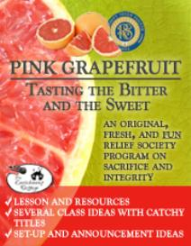 Pink Grapefruit Supplemental Ebook: Planning the Party | eBooks | Religion and Spirituality