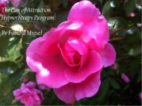 First Additional product image for - The Law of Attraction Hypnotherapy audio mp3 download