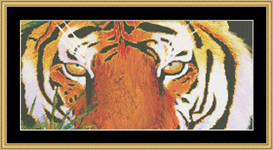 Tigers Eye Cross Stitch Pattern Download | Crafting | Cross-Stitch | Other