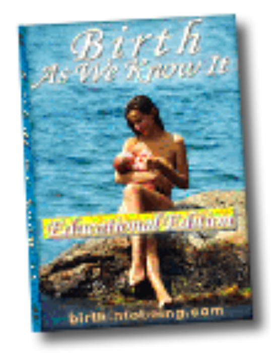 First Additional product image for - Birth As We Know It - Educational Version - English - 30min.