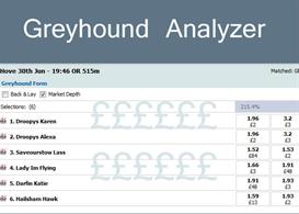 Betfair Greyhound Analyzer | eBooks | Sports