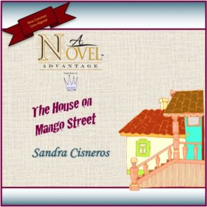 The House on Mango Street Novel Unit | Documents and Forms | Presentations