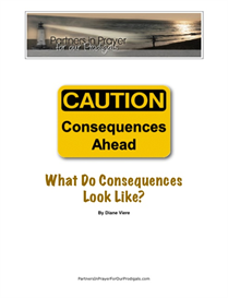 ebooklet: what do consequences look like?