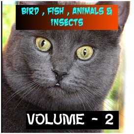 ANIMALS BIRDS AND FISHES - Volume - 2