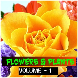 flowers and plants - volume - 1