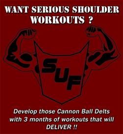 sci-unison fitness shoulder workouts ver. 1.0