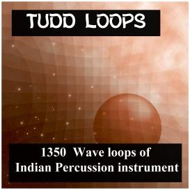 Asian Tudd Loops | Music | Soundbanks