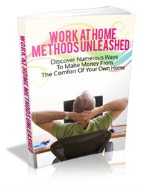 Work at Home | eBooks | Education
