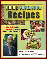 living superfood recipes: medicine has never tasted like this before