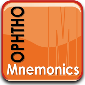 Mnemonics in Ophthalmology MP3 Audio | Audio Books | Science