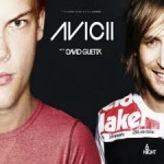 David Guetta Ft. Flo Rida vs Avicii - Where Dem Levels At (DJ's From Mars) HD