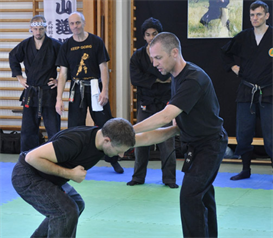 Steve Olsen from Sweden Tai Kai 2011 | Movies and Videos | Educational