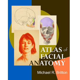 atlas of facial anatomy