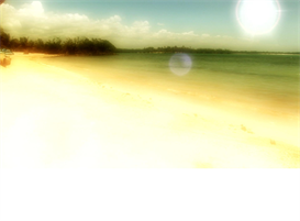 HD Dreamy Tropical Beach Mood Video Download | Movies and Videos | Special Interest