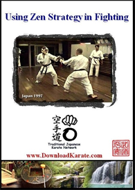 DVD Using Zen Strategy in Fighting | Movies and Videos | Educational