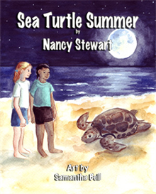 sea turtle summer