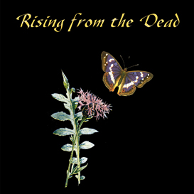 RISING FROM THE DEAD How to Overcome Depression and Be True to The Whole of Your Experience (ebook) | eBooks | Self Help