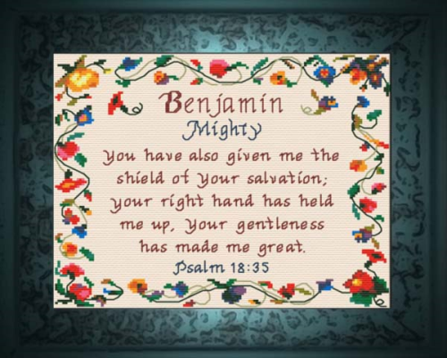 First Additional product image for - Name Blessings - Benjamin