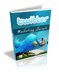 Twitter Marketing Secrets - Video Series (PLR)