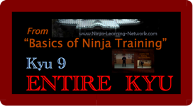 KYU 9 - MP4 - Basics of Ninja Training - Ninjutsu Lessons Lessons (Bujinkan)   Movies and Videos   Sports