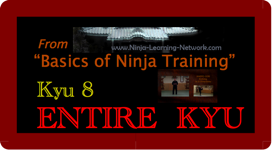 KYU 8 - MP4 - Basics of Ninja Training - Ninjutsu Lessons Lessons (Bujinkan)