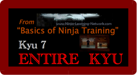 KYU 7 - MP4 - Basics of Ninja Training - Ninjutsu Lessons Lessons (Bujinkan)