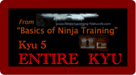 KYU 5 - MP4 - Basics of Ninja Training - Ninjutsu Lessons Lessons (Bujinkan)
