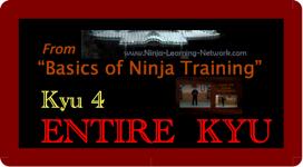KYU 4 - MP4 - Basics of Ninja Training - Ninjutsu Lessons Lessons (Bujinkan) | Movies and Videos | Sports