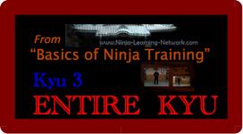 KYU 3 - MP4 - Basics of Ninja Training - Ninjutsu Lessons Lessons (Bujinkan) | Movies and Videos | Sports