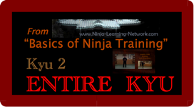 KYU 2 - MP4 - Basics of Ninja Training - Ninjutsu Lessons Lessons (Bujinkan)