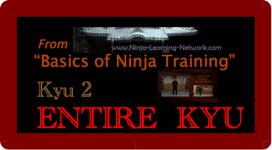 KYU 2 - MP4 - Basics of Ninja Training - Ninjutsu Lessons Lessons (Bujinkan) | Movies and Videos | Sports