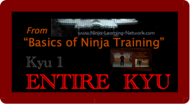 KYU 1 - MP4 - Basics of Ninja Training - Ninjutsu Lessons Lessons (Bujinkan)