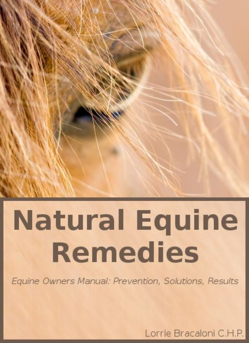First Additional product image for - Natural Equine Remedies