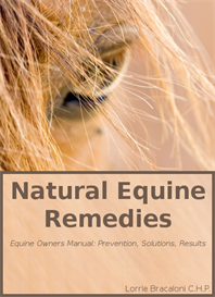 natural equine remedies