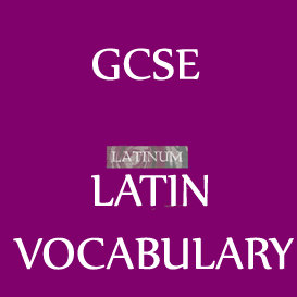 GCSE Latin Vocabulary in Latin-English-Latin Audio 53 minutes | Audio Books | Languages