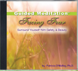 Facing Fear - The Power Within™ Guided Meditation Series | Audio Books | Health and Well Being