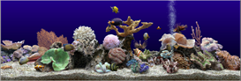 Marine Aquarium V3.2 Screen Saver